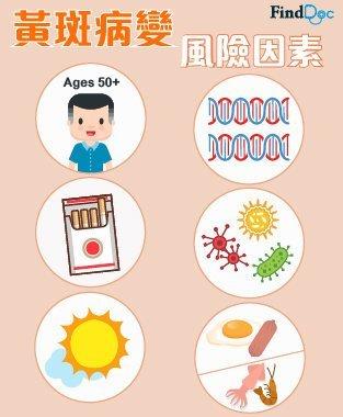 黃斑病變 (Macular Diseases) 成因