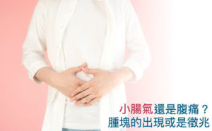 小腸氣 (腹股溝疝氣)