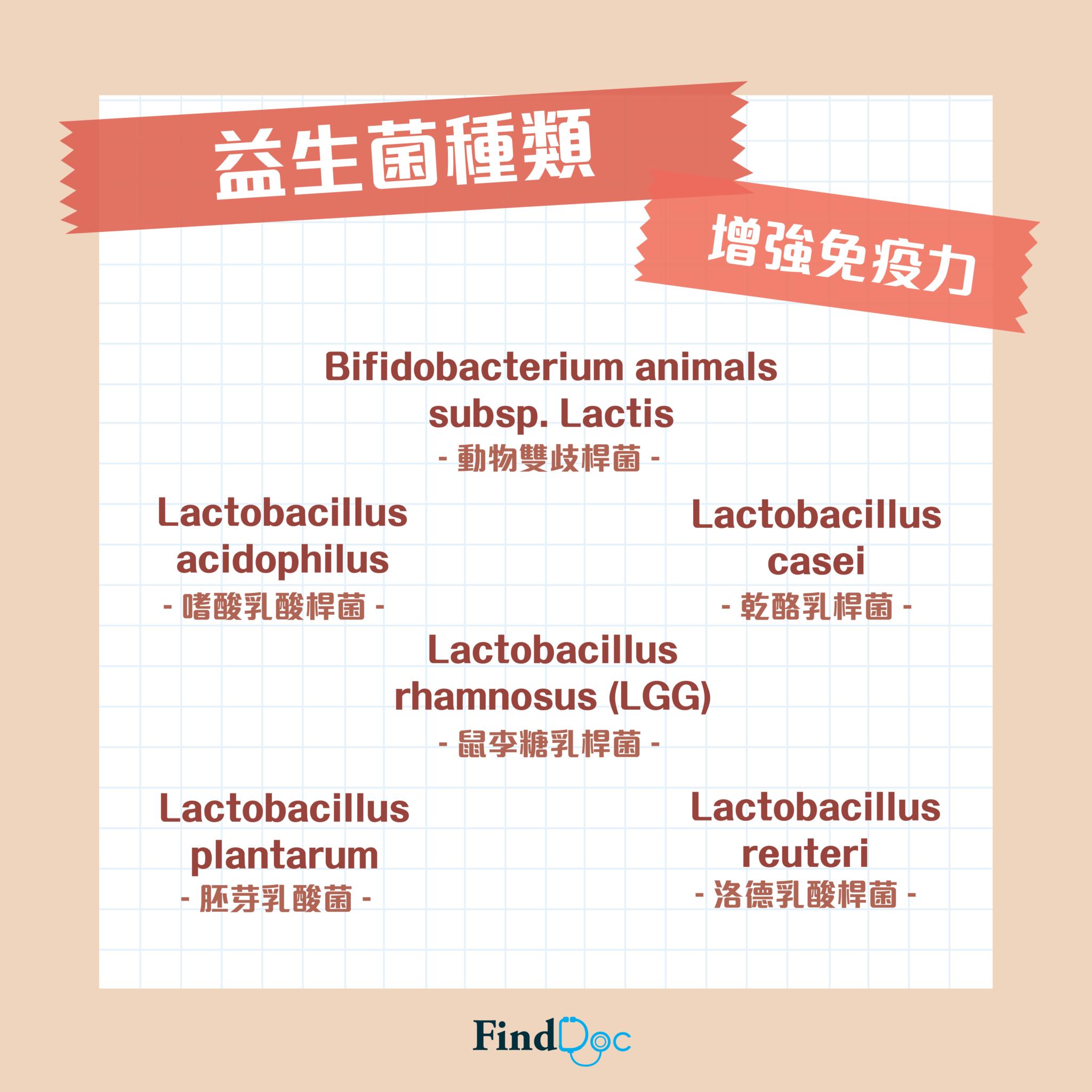 有助增強身體免疫力的益生菌種類