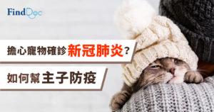 【新冠肺炎】擔心寵物確診,如何幫主子防疫?