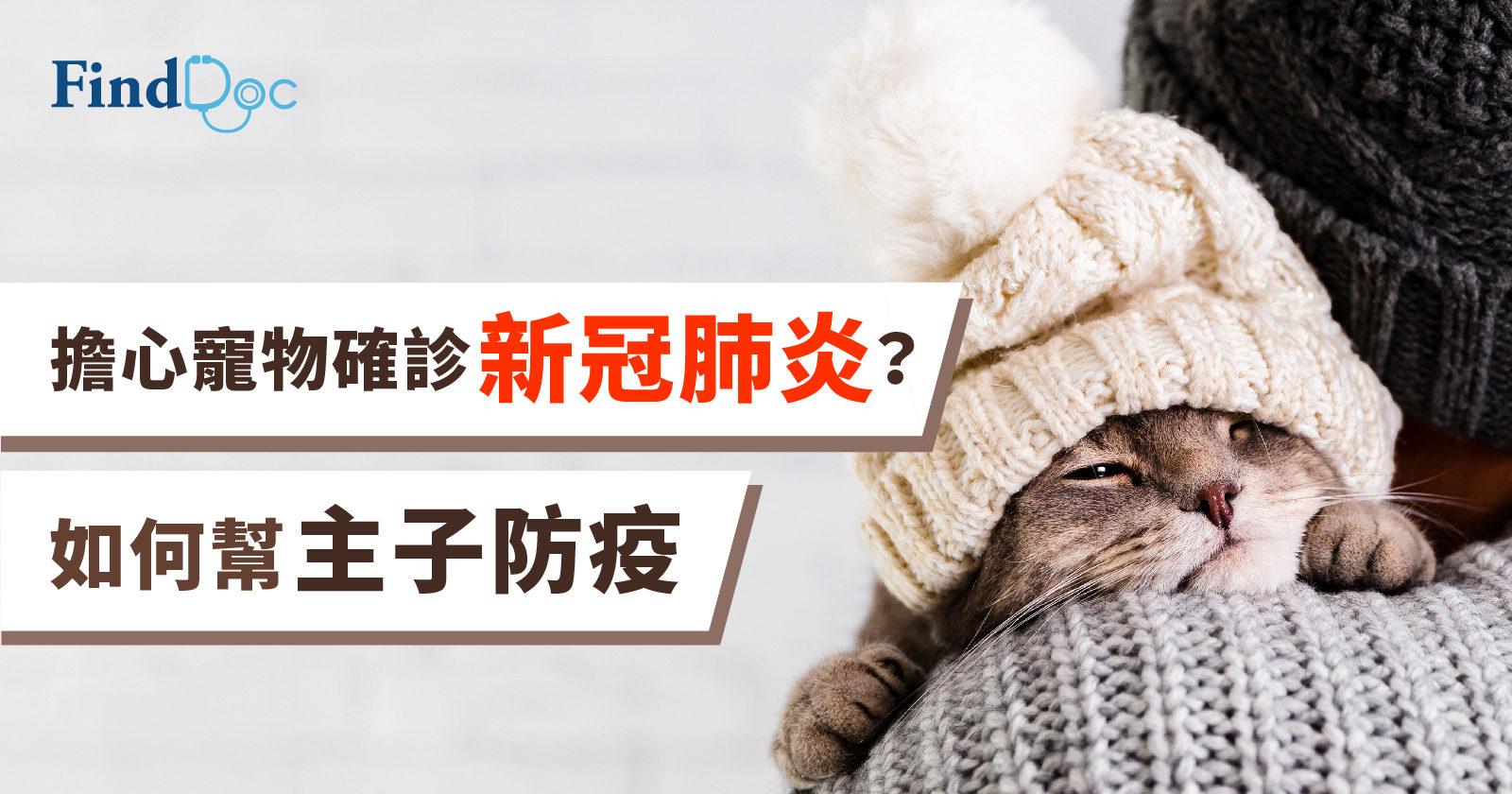 擔心寵物確診新冠肺炎? 如何幫主子防疫